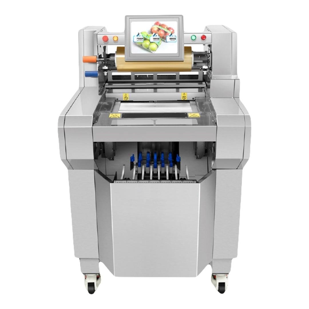 Empaquetadora Semi-Automática Brunetti EPF500SA
